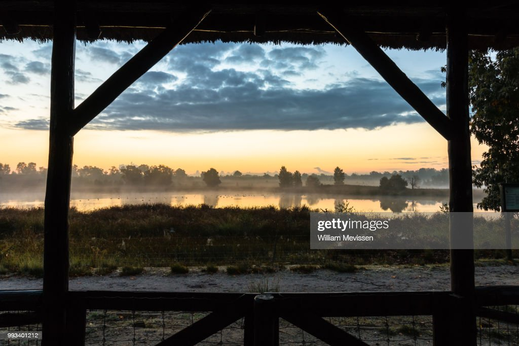 Misty Morning View : Stockfoto