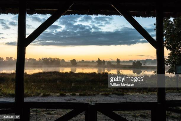 misty morning view - william mevissen stockfoto's en -beelden