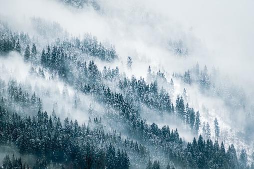 Misty Mountains 1067955260