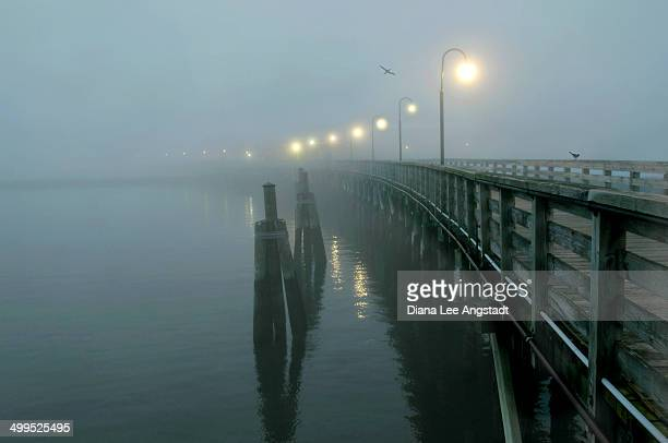 misty pier - rye new york stockfoto's en -beelden