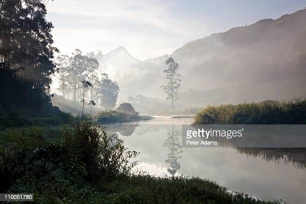 Misty river Munnar, Kerala, South India