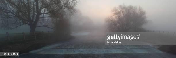 Misty River Nene.