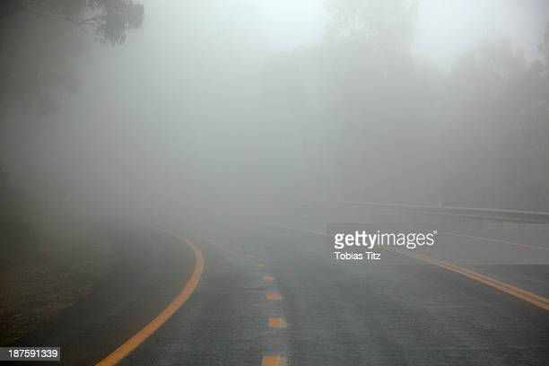 Misty road in Jindabyne, New South Wales, Australia