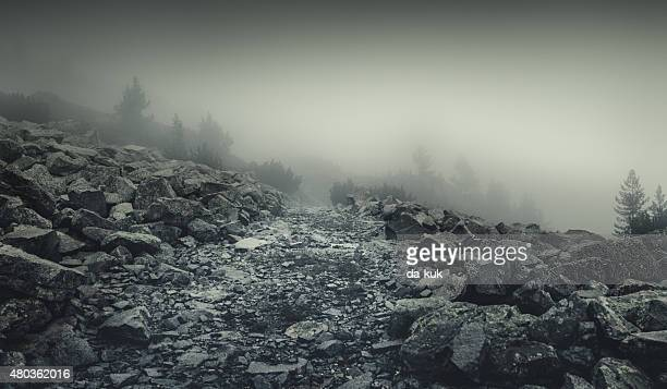 misty road in mountains - rock stock pictures, royalty-free photos & images