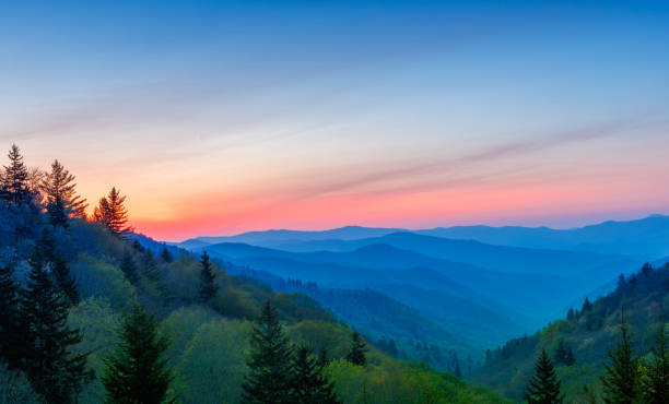 misty rolling mountain range just before sunrise at great smoky mountains national park - horizontal stock pictures, royalty-free photos & images