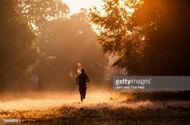 misty run - morning stockfoto's en -beelden