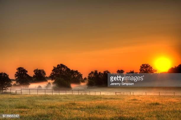 misty rural landscape at sunrise, asher, oklahoma, usa - oklahoma stock pictures, royalty-free photos & images