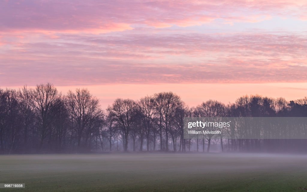 Misty Rural Twilight : Stockfoto