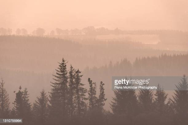misty sunrise across loch ness, highlands, scotland - drumnadrochit stock pictures, royalty-free photos & images