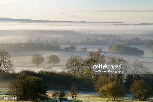 Misty Sunrise from Newlands Corner in Surrey