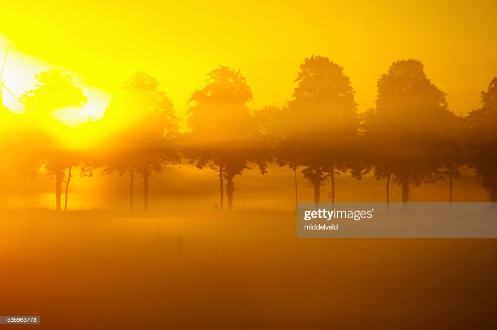 Misty sunrise over the country : Stock Photo