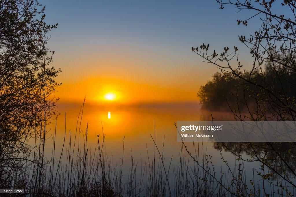 Misty Sunrise 'Silhouettes' : Stockfoto