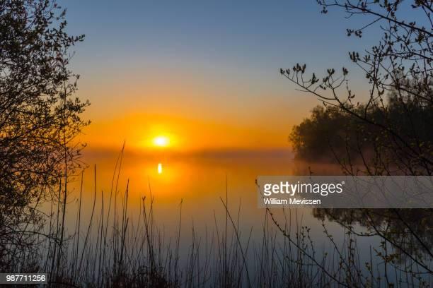 misty sunrise 'silhouettes' - william mevissen ストックフォトと画像
