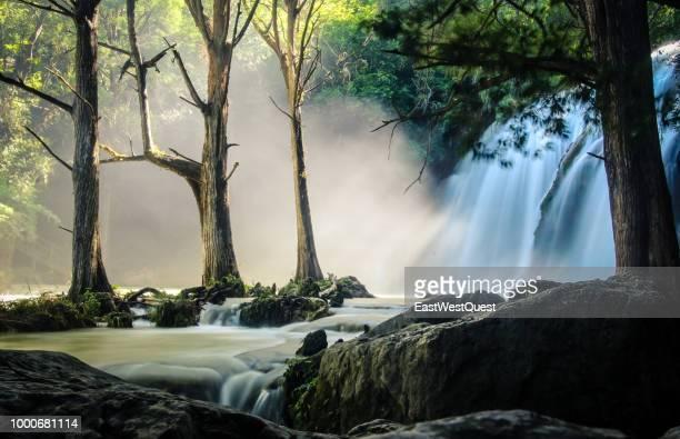 misty waterfall in el chiflon - paisajes de mejico fotografías e imágenes de stock