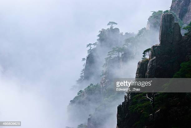 Misty West Sea Canyon