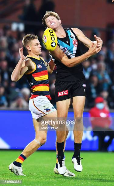 Mitch Georgiades of Port Adelaide competes with David Mackay of the Crows for a mark during the round eight AFL match between the Port Adelaide Power...