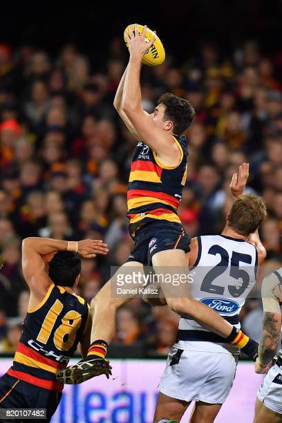 Mitch McGovern of the Crows marks the ball during the round 18 AFL match between the Adelaide Crows and the Geelong Cats at Adelaide Oval on July 21...
