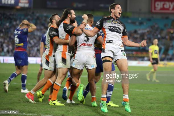 Mitch Moses of the Tigers celebrates victory with his team during the round eight NRL match between the Wests Tigers and the Canterbury Bulldogs at...