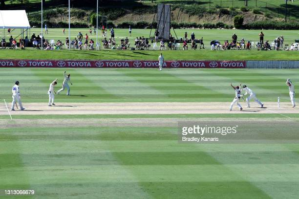 Mitch Swepson of Queensland celebrates taking the wicket of Trent Copeland of New South Wales during day four of the Sheffield Shield Final match...