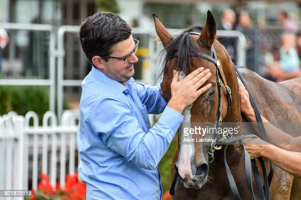 Mitchell Beer with Dreams of Paris after winning the Mitavite Summer Challenge Heat 5 at Caulfield Racecourse on February 21, 2018 in Caulfield,...