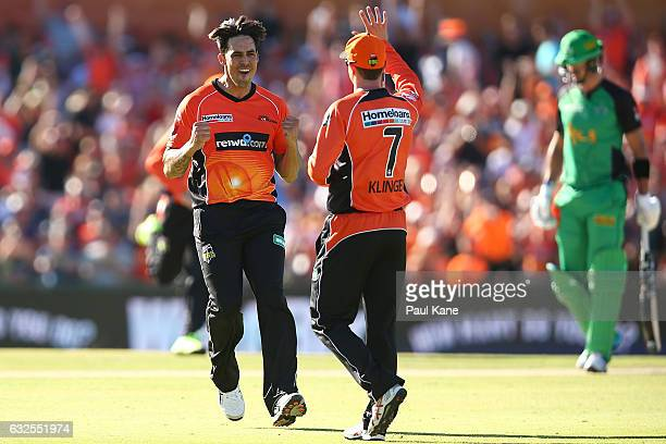 Mitchell Johnson and Michael Klinger of the Scorchers celebrate the wicket of Kevin Pietersen of the Stars during the Big Bash League match between...