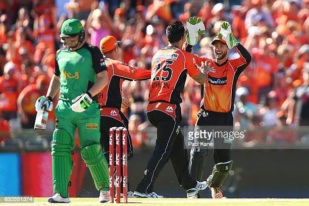Mitchell Johnson and Sam Whiteman of the Scorchers celebrate the wicket of Rob Quiney of the Stars during the Big Bash League match between the Perth...