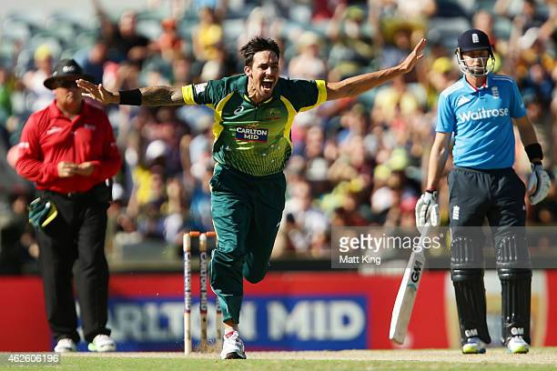 Mitchell Johnson of Australia celebrates taking the wicket of Eoin Morgan of England during the final match of the Carlton Mid One Day International...