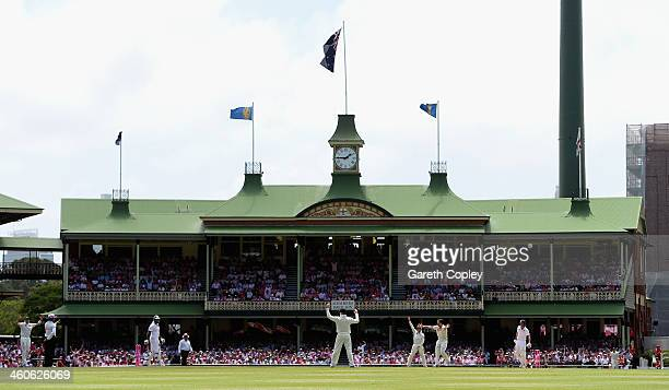 Mitchell Johnson of Australia successfully appeals for the wicket of England captain Alastair Cook during day three of the Fifth Ashes Test match...
