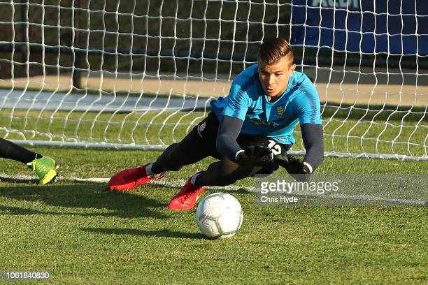 Mitchell Langerak during the Australian Socceroos training session at Lion FC Stadium on November 15, 2018 in Brisbane, Australia.
