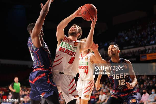 Mitchell Norton of the Perth Wildcats shoots during the round 19 NBL match between Adelaide 36ers and Perth Wildcats at Adelaide Entertainment...