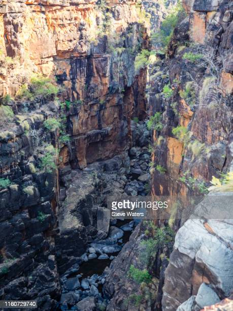 mitchell river national park, kimberley, western australia, australia - 22nd sep 2018 - gorge below big mertens falls, dry season, mitchell plateau (ngauwudu), wunambal country. - brook mitchell stock pictures, royalty-free photos & images