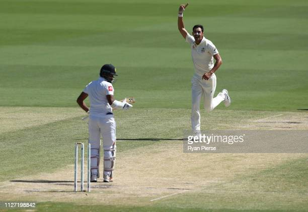Mitchell Starc of Australia celebrates after taking the wicket of Dimuth Karunaratne of Sri Lanka during day four of the Second Test match between...