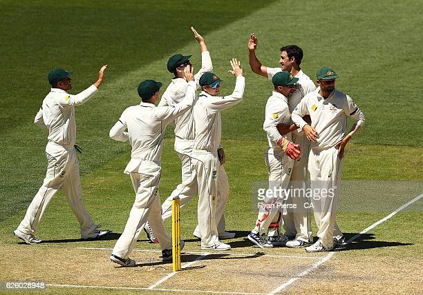 Mitchell Starc of Australia celebrates after taking the wicket of Vernon Philander of South Africa during day four of the Third Test match between...