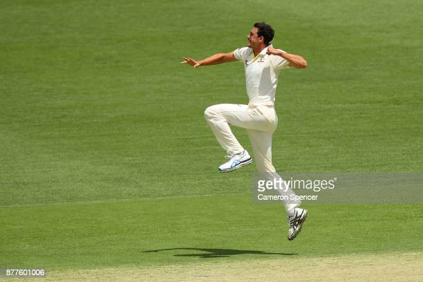 Mitchell Starc of Australia celebrates after taking the wicket of Alastair Cook of England during day one of the First Test Match of the 2017/18...