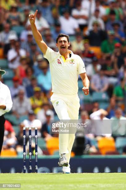 Mitchell Starc of Australia celebrates taking the wicket of Alastair Cook of England during day one of the First Test Match of the 2017/18 Ashes...