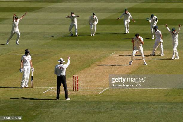 Mitchell Starc of Australia celebrates the wicket of Mayank Agarwal of India during day one of the Second Test match between Australia and India at...