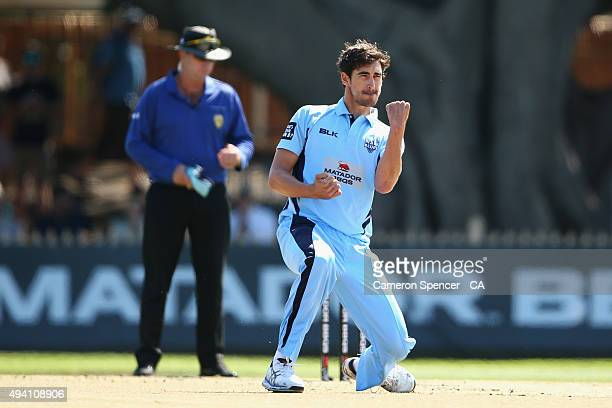 Mitchell Starc of the Blues celebrates dismissing Travis Head of the Redbacks during the Matador BBQs One Day Cup final match between New South Wales...