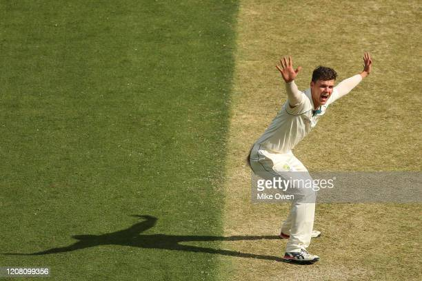 Mitchell Swepson of Australia appeals unsuccessfully for LBW during the Four Day match between Australia A and the England Lions at Melbourne Cricket...
