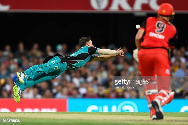 Mitchell Swepson of the Heat drops a diving catch during the Big Bash League match between the Brisbane Heat and the Melbourne Renegades at The Gabba...