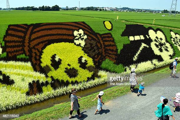 Mito City official mascot 'Mitochan' is drawn in a rice paddy on July 26 2015 in Mito Ibaraki Japan