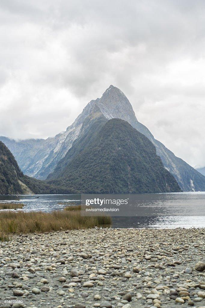 Mitre peak, Milford Sound, New Zealand : Bildbanksbilder