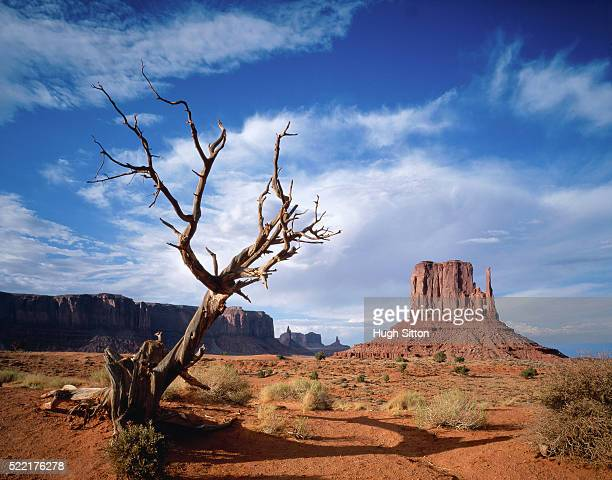 mittens in monument valley (usa) - hugh sitton stock-fotos und bilder