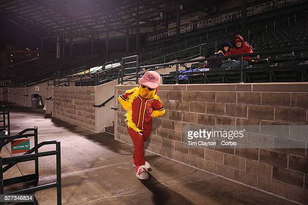 Mittsy the mascot during the Rochester Red Wings V The Scranton/WilkesBarre RailRiders Minor League ball game at Frontier Field Rochester New York...