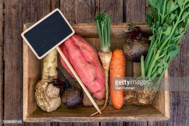 mix of raw root vegetables - celeriac - fotografias e filmes do acervo