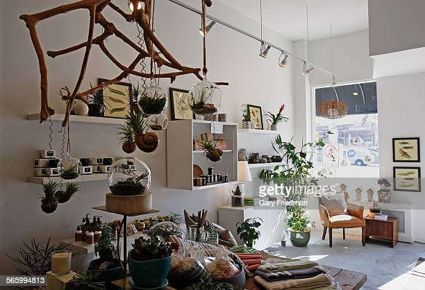 A mix of terrariums cermamics botanical art and other gifts as seen at Acorn on December 31 in the Eagle Rock area of Los Angeles