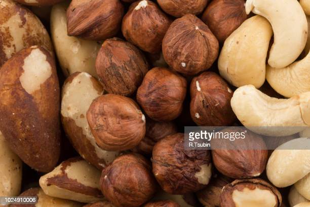 mix of various nuts background above closeup - brazil nut fotografías e imágenes de stock