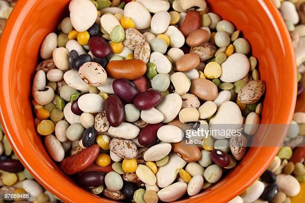 Mixed Bean Close-Up