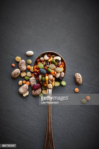 mixed beans - legume family stock pictures, royalty-free photos & images