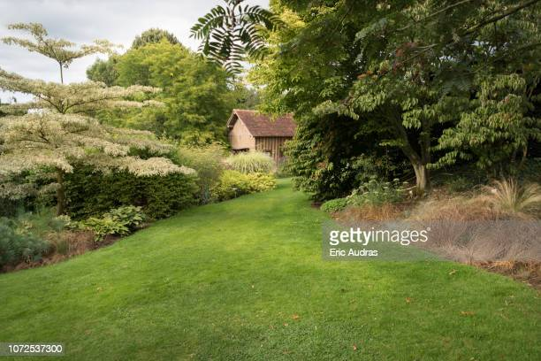 mixed borders with flowers in a country garden - normandy stock pictures, royalty-free photos & images
