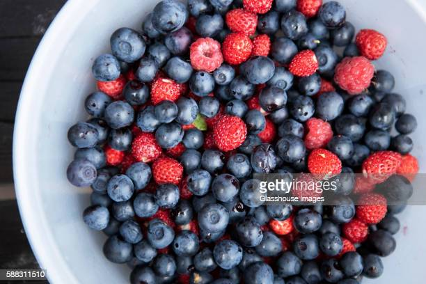mixed bowl of berries - berry fruit stock pictures, royalty-free photos & images